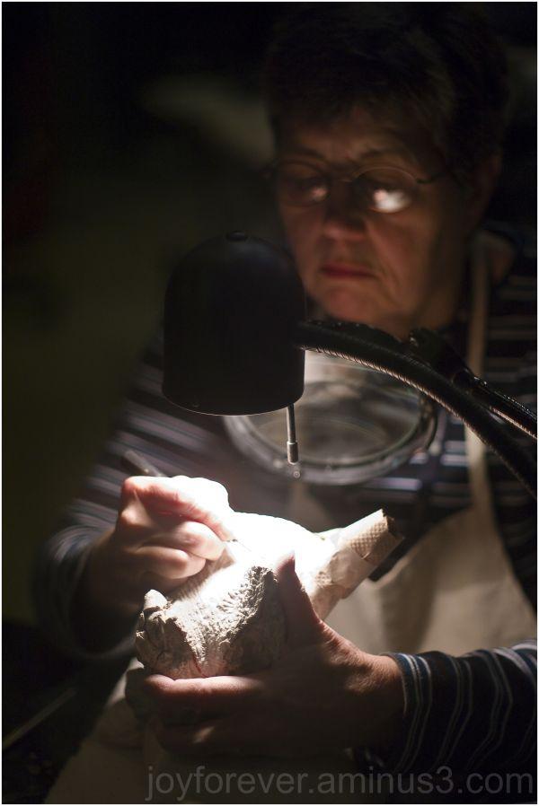 woman fossil smithsonian museum mammal washington