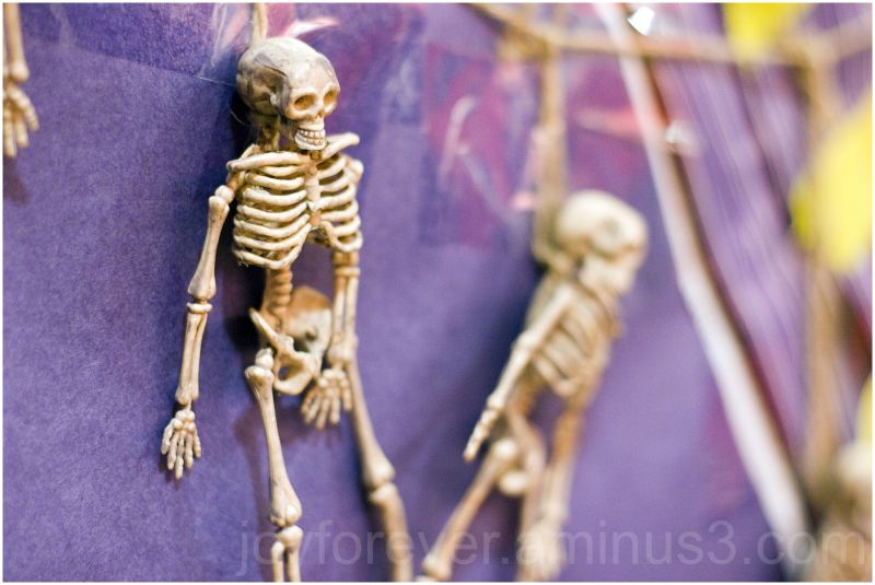 Halloween decoration toy skeleton still-life