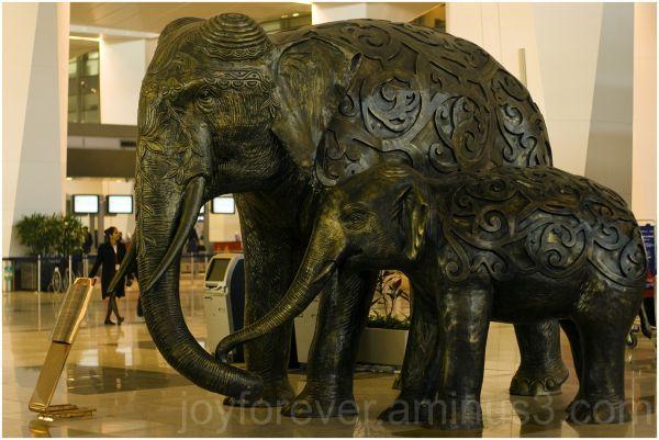 Terminal-3 New-Delhi Airport India T3 Elephant