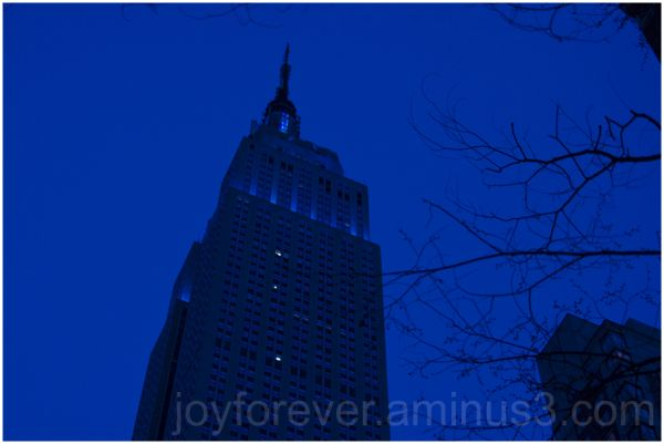 Empire-State-Building NYC New-York Blue Cricket
