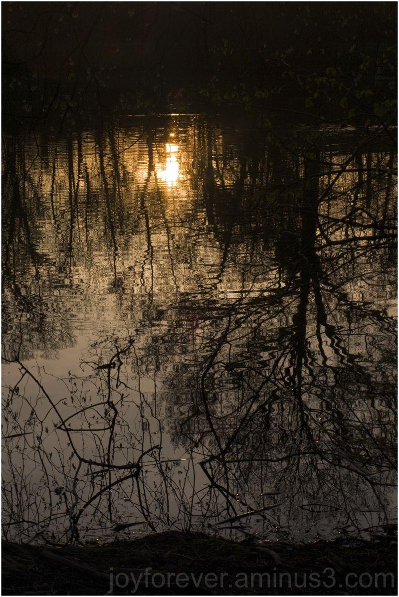 branch-brook-park Newark NJ USA Sunset reflection
