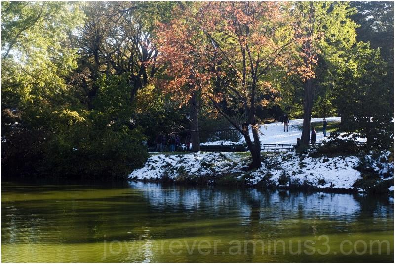 fall foliage snow central-park new-york-city lake