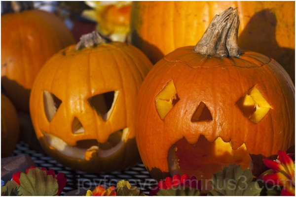 Pumpkin Fall jack-o-lantern carving Halloween