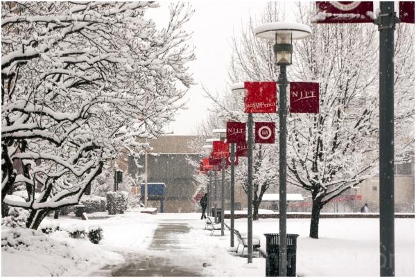 snow NJIT tree snowstorm blizzard red white newark