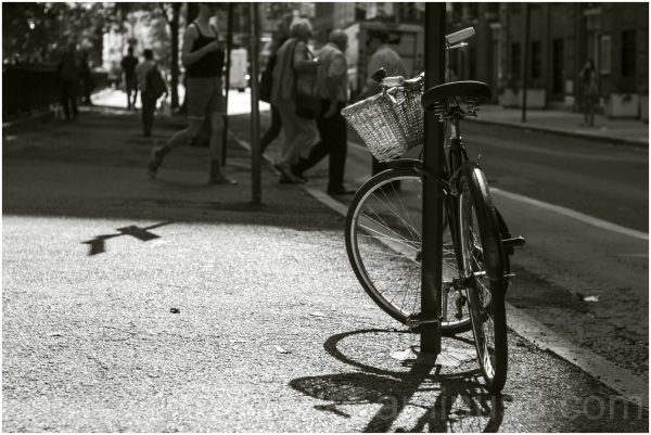 bicycle street new-york NYC black-and-white sepia