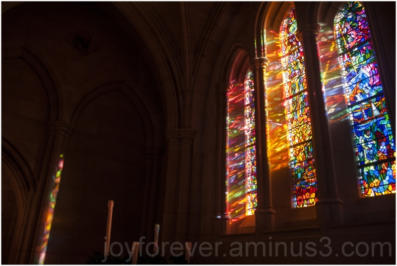 stained-glass window church sunlight Cathedral DC