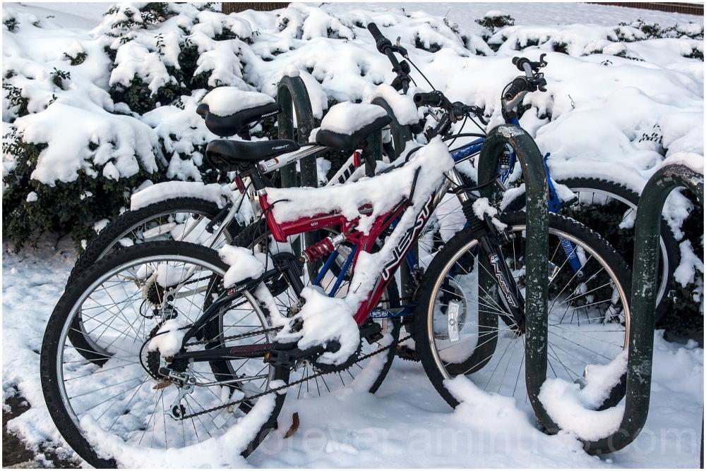 snow bike bicycle winter GMU George-Mason Fairfax