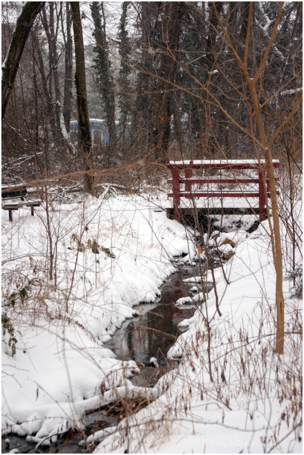 bridge stream snow tree snowfall winter cold water