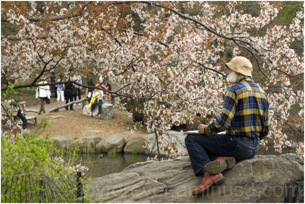 central-park NYC spring flowers artist rock