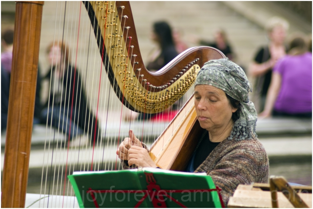 central-park NYC harp musician Bethesda fountain