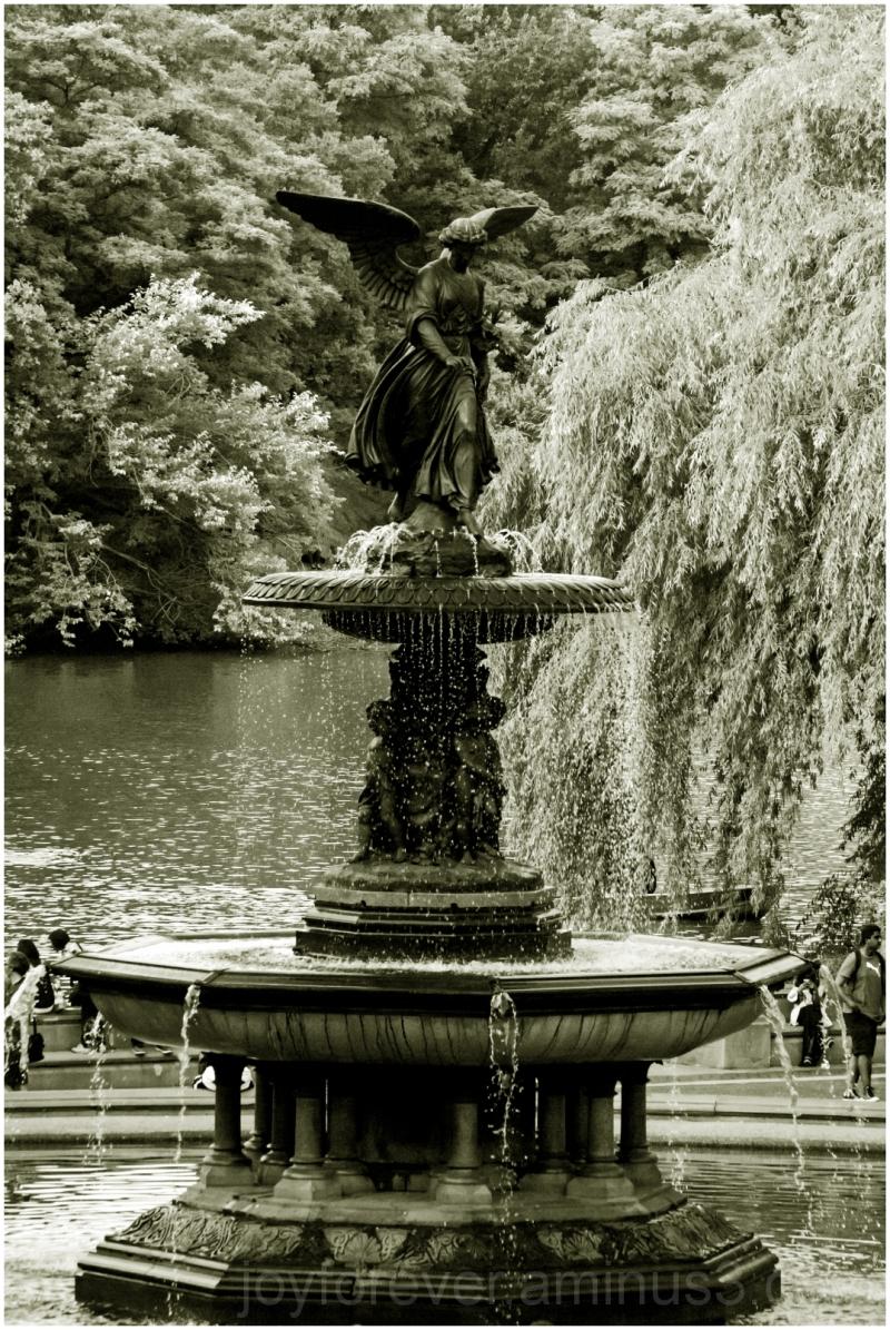 Bethesda fountain Central-Park New-York-City B&W