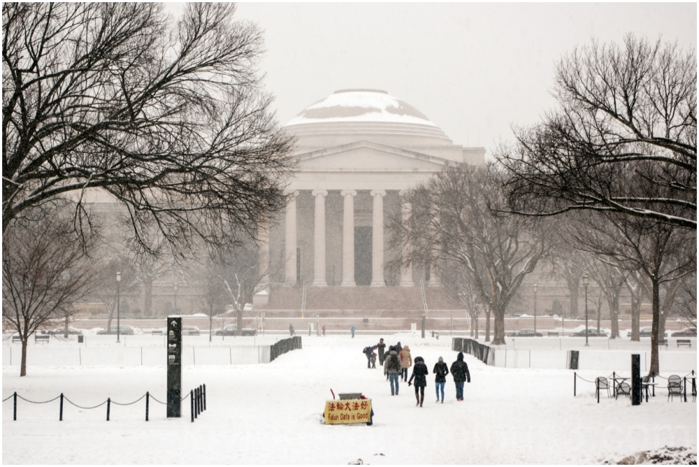 Washington DC Smithsonian snowstorm National-Mall