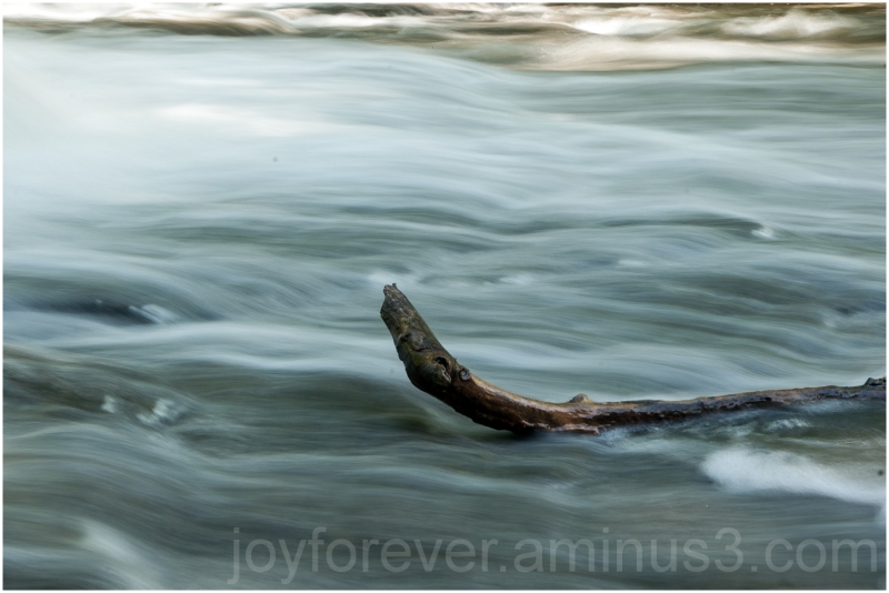 water river rapid branch Cascadilla Gorge Ithaca