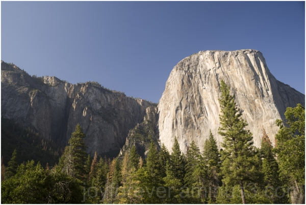 Elcapitan Granite Cliff Mountain Yosemite CA