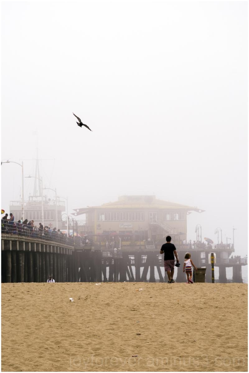 SantaMonica beach father child girl pigeon sand