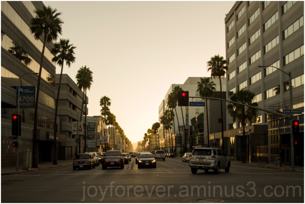 SunsetBoulevard LosAngeles Hollywood CA street