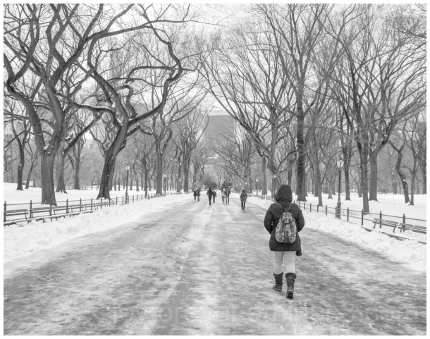 CentralPark Mall walk woman snow trees NYC