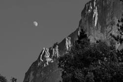 Yosemite NationalPark USA California B&W Black&Whi