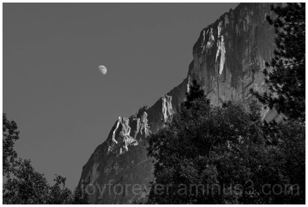 Yosemite NationalPark USA California B&W Black&Whi