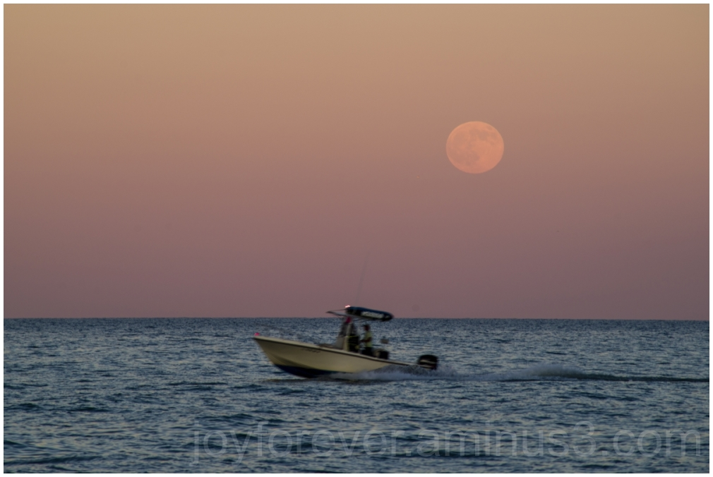 Moon moonrise lake Michigan LakeMichigan water IL