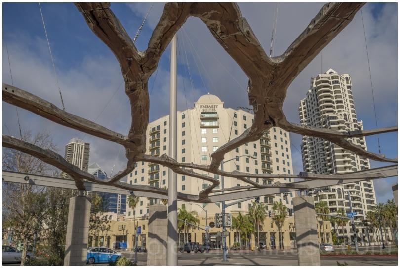 SanDiego California park sculpture trees hotels