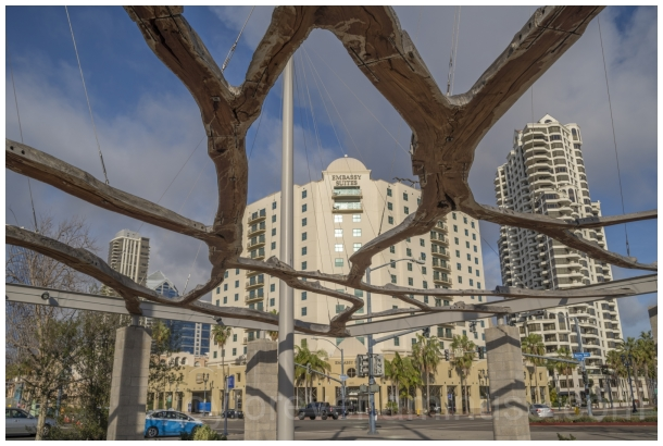 SanDiego California park sculpture trees hotels