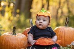 pumpkin vegetable baby girl infant autumn fall