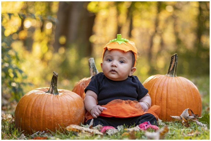 pumpkin vegetable baby girl infant autumn fall