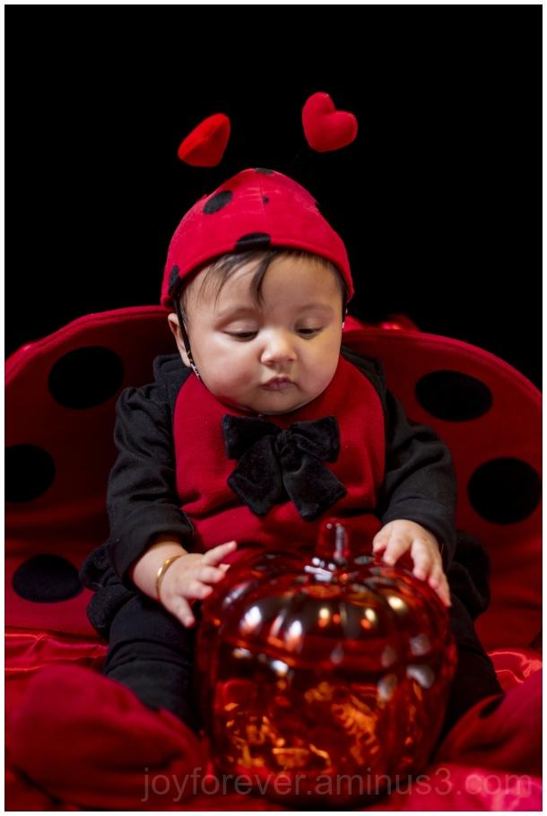 ladybird ladybug Halloween costume baby infant