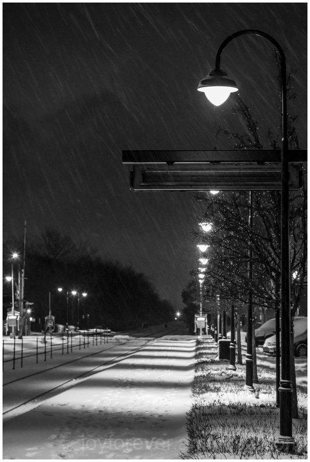 snow snowfall winter cold station LakeForest B&W