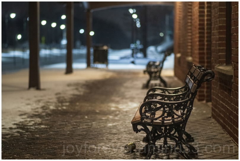 snow snowfall winter cold station LakeForest bench