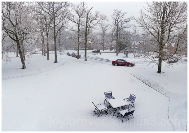 snow snowfall winter cold April LakeForest IL