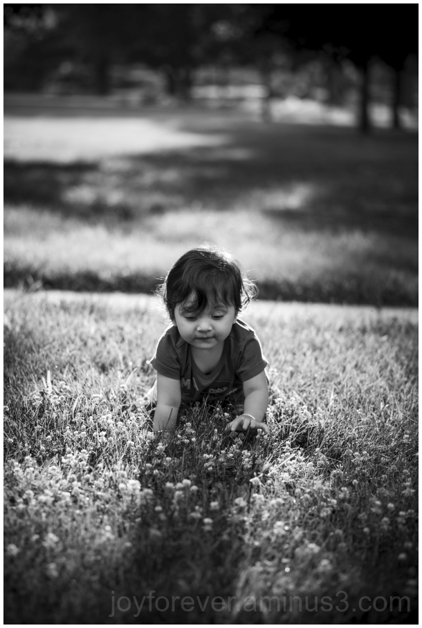 baby toddler infant girl B&W Black&White grass