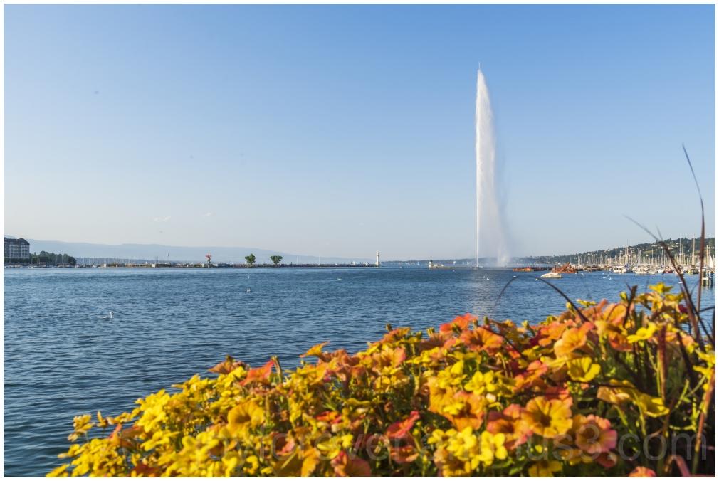Lake Geneva Switzerland water fountain flowers