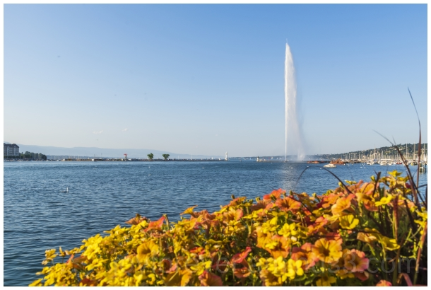 Lake Geneva Switzerland water fountain flowers