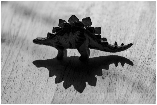Stegosaurus dinosaur toy StillLife shadow B&W