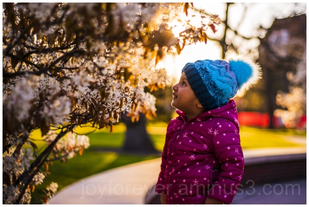 flowers blossoms spring evening baby toddler girl