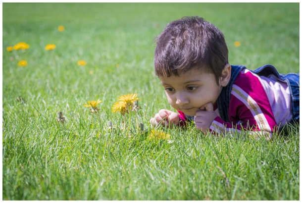 toddler girl child baby flower grass dandelion