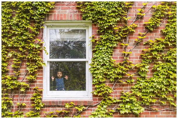 pw2020 window ivy vine wall reflection trees child