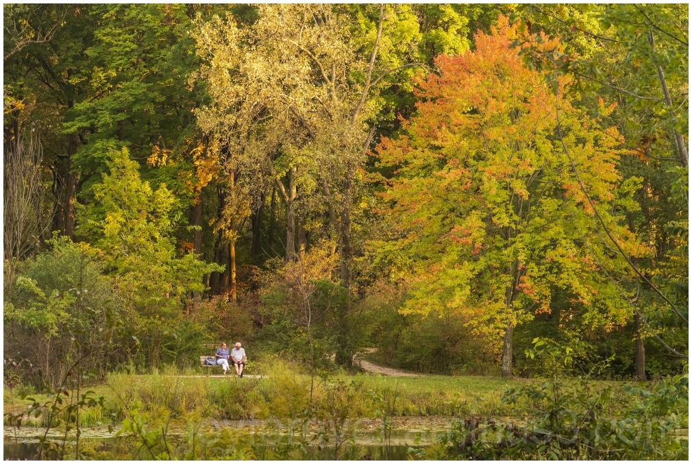autumn fall couple relax foliage fallcolors trees