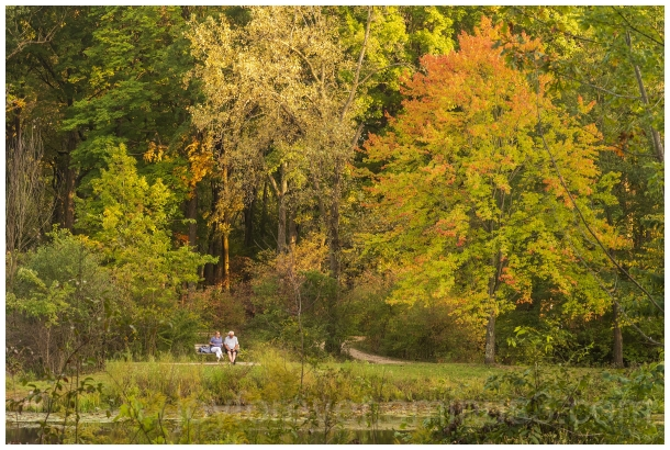 autumn fall couple relax foliage fallcolors trees