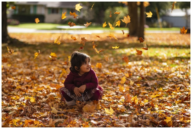 Fall Autumn leaves foliage yellow Maple toddler WI