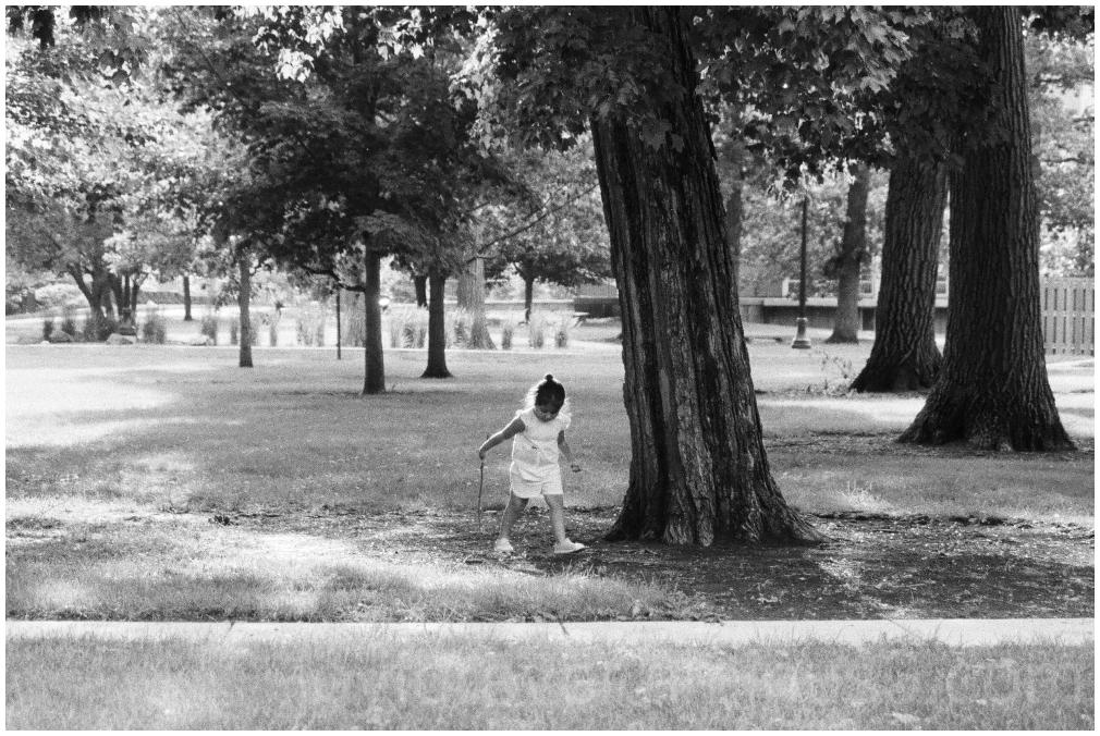child tree Black&White B&W 35mm film Ilford