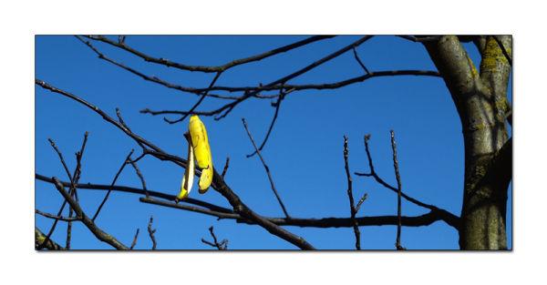 Peau d'banane !!!