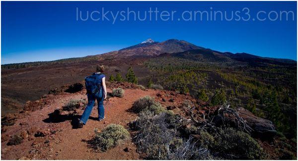 Volcanic plains in Teide National Park