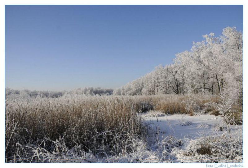 Haaksbergerveen  snow en ice