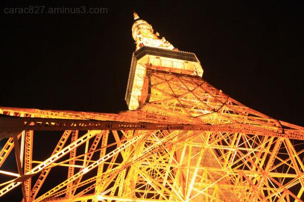 Japan Tokyo Trip