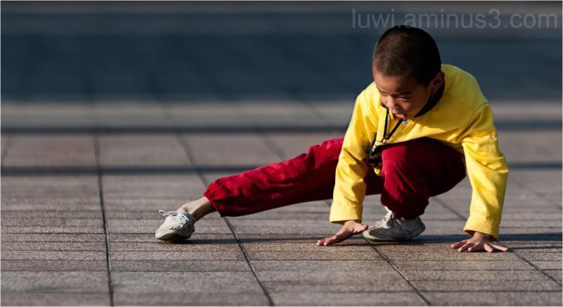 kungfu boy