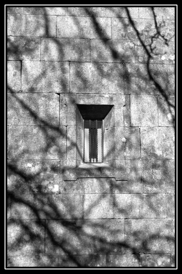 Sombra en la piedra