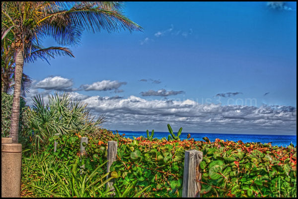 A view of the Atlantic Ocean, from Juno Beach, FL